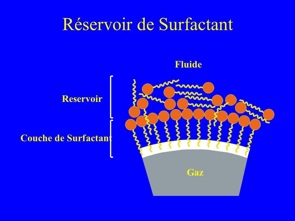 Réservoir de Surfactant Gaz Fluide Couche de Surfactant Reservoir Notez quil ny a que le surfactant situé dans la couche de surfactant qui puisse géné