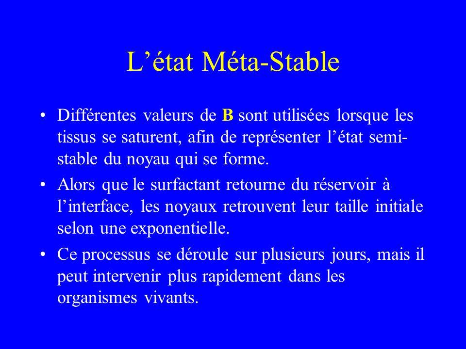 Létat Méta-Stable Différentes valeurs de B sont utilisées lorsque les tissus se saturent, afin de représenter létat semi- stable du noyau qui se forme