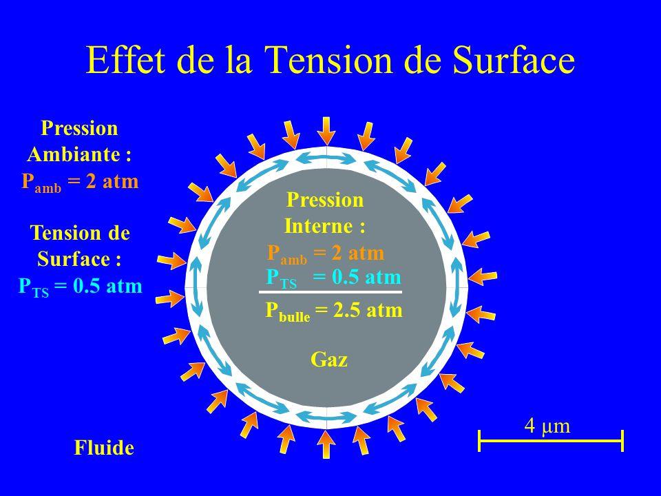 Effet de la Tension de Surface 4 µm Fluide Pression Ambiante : P amb = 2 atm Pression Interne : P amb = 2 atm Tension de Surface : P TS = 0.5 atm P bu