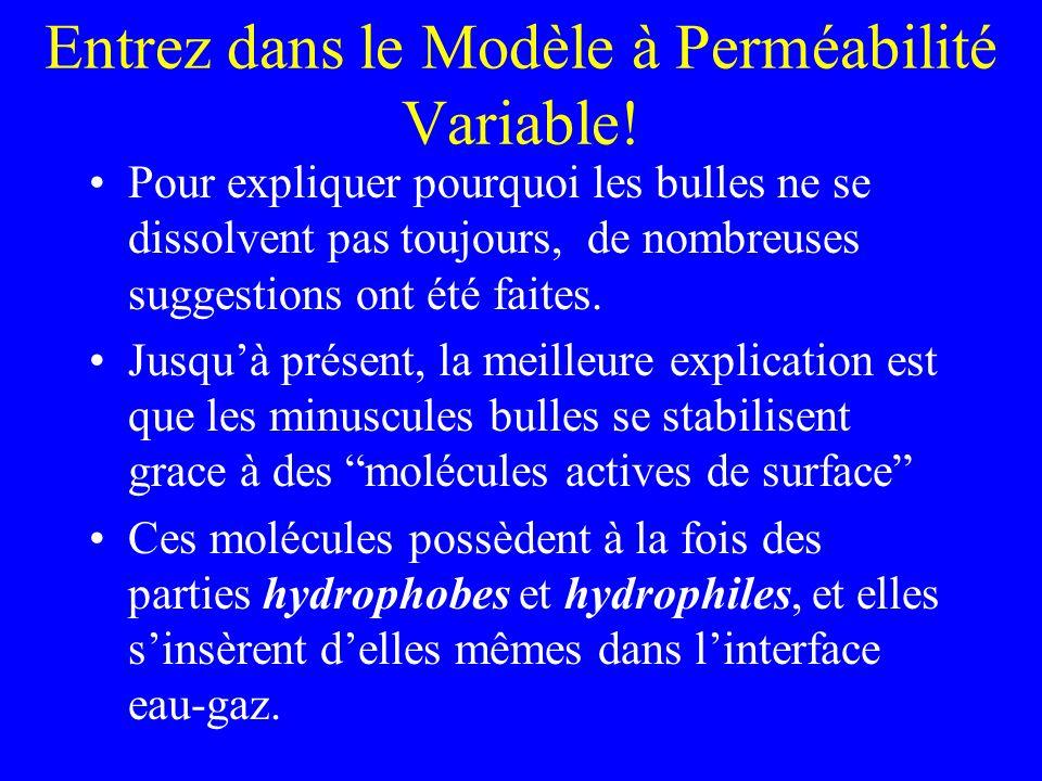 Dautres modèles candidats Les nombreux succès de VPM (prédiction des paliers plus profonds, etc) peuvent également trouver une explication parmis dautres modèles de croissance de bulle par diffusion et phase déquilibre (où il existe trop de noyau disponible pour que le gaz puisse grossir en bulle).