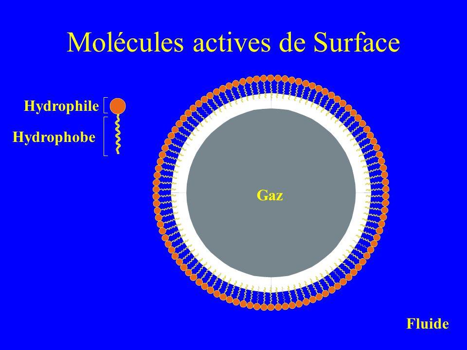Molécules actives de Surface Gaz Fluide Hydrophobe Hydrophile