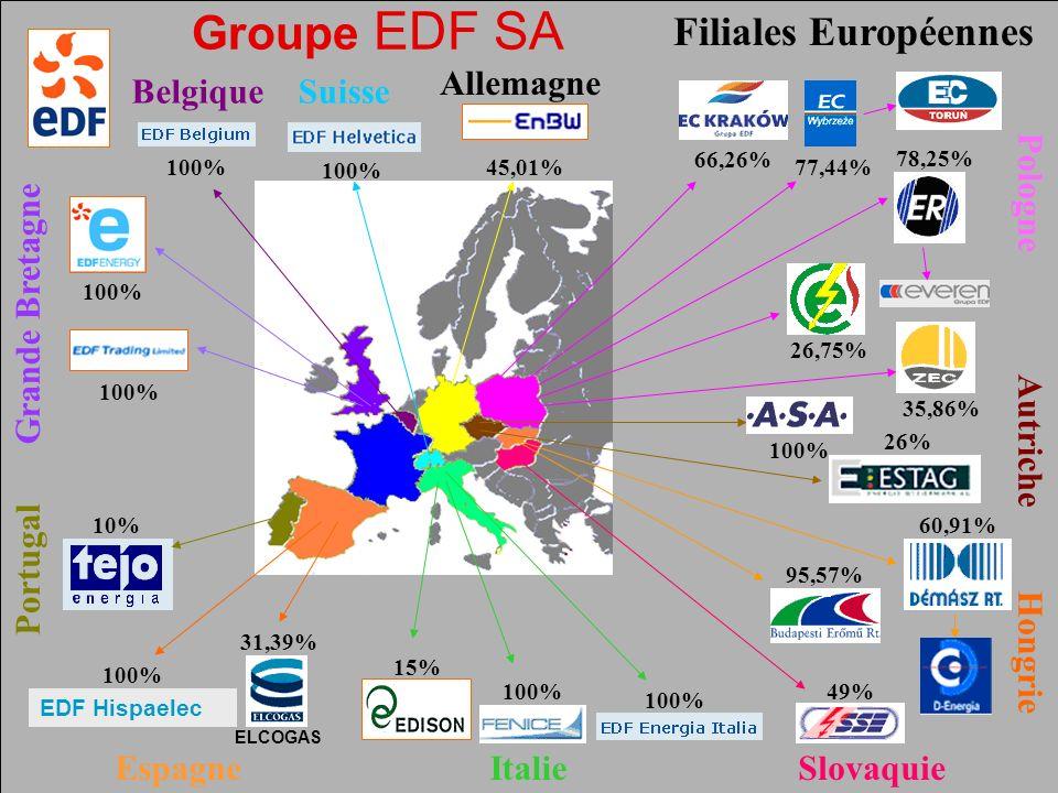 Pôle Public JMK 2003 FNME CGT Février 2006 43 Groupe EDF SA Filiales Européennes 10% EDF Hispaelec 100% ELCOGAS 31,39% 15% 100% 45,01% 26% 100% 49%100% 66,26% 78,25% 26,75%35,86% 77,44% 60,91% 95,57% Slovaquie Hongrie ItalieEspagne Portugal Suisse Autriche Grande Bretagne Pologne Allemagne Belgique