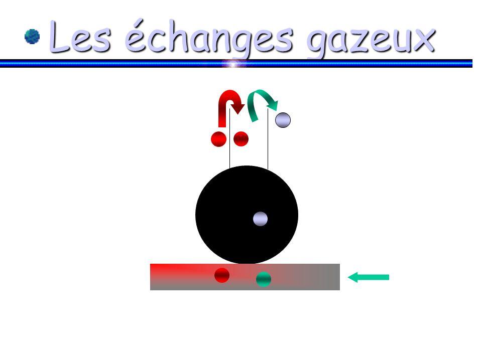 Loi de Dalton Pression partielle = P totale x fraction du gaz dans le mélange
