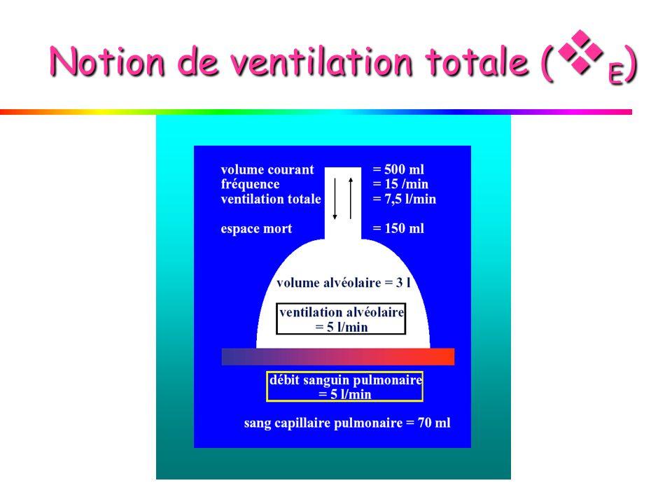 Effet du mode ventilatoire sur le rapport V D / V T E(ml/mn)VTmlFc/mn V A ml V D ml Aml/mn Dml/mn A6OOO6001045015045001500 B60003002015015030003000 C600012005105015052507500