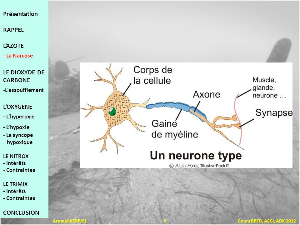Présentation RAPPEL LAZOTE - La Narcose LE DIOXYDE DE CARBONE -Lessoufflement LOXYGENE - Lhyperoxie - Lhypoxie - La syncope hypoxique LE NITROX - Inté