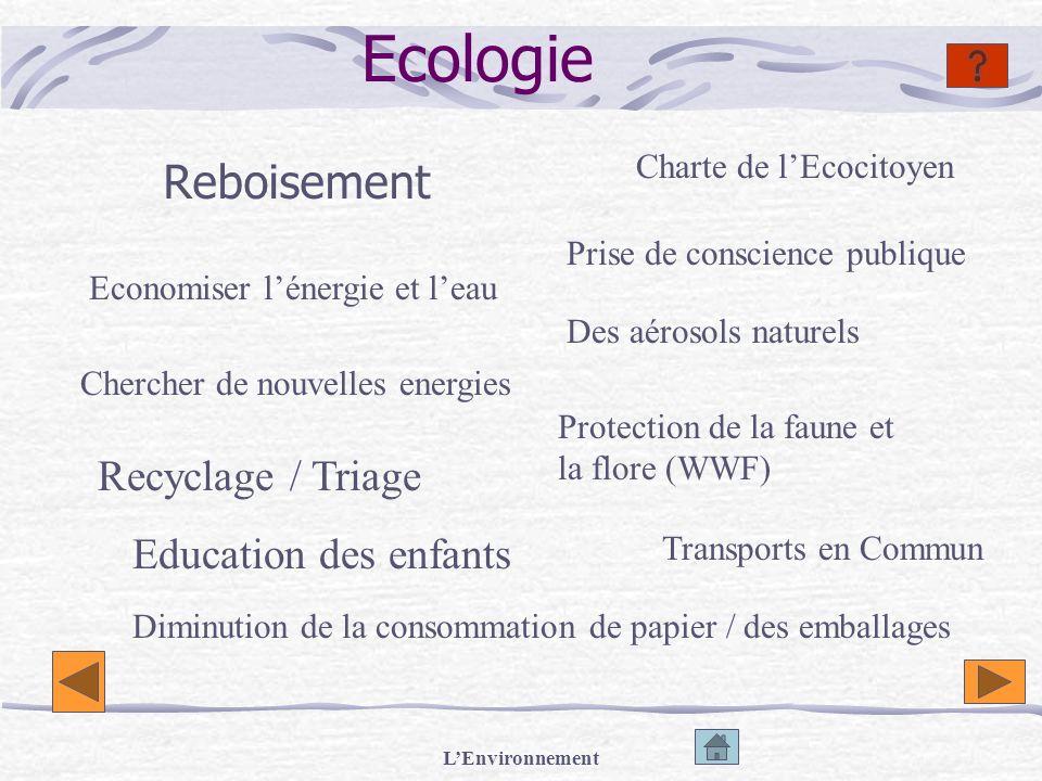 LEnvironnement Ecologie Reboisement Economiser lénergie et leau Chercher de nouvelles energies Recyclage / Triage Protection de la faune et la flore (