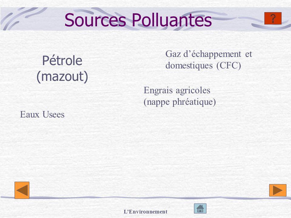 LEnvironnement Actions Polluantes Gaspillage Destruction des forets Usines Voitures Dégazage (en mer) Destruction des déchets par incinération Mauvais entretien des pétroliers (marées noires) Déversement des produits chimiques dans les rivières