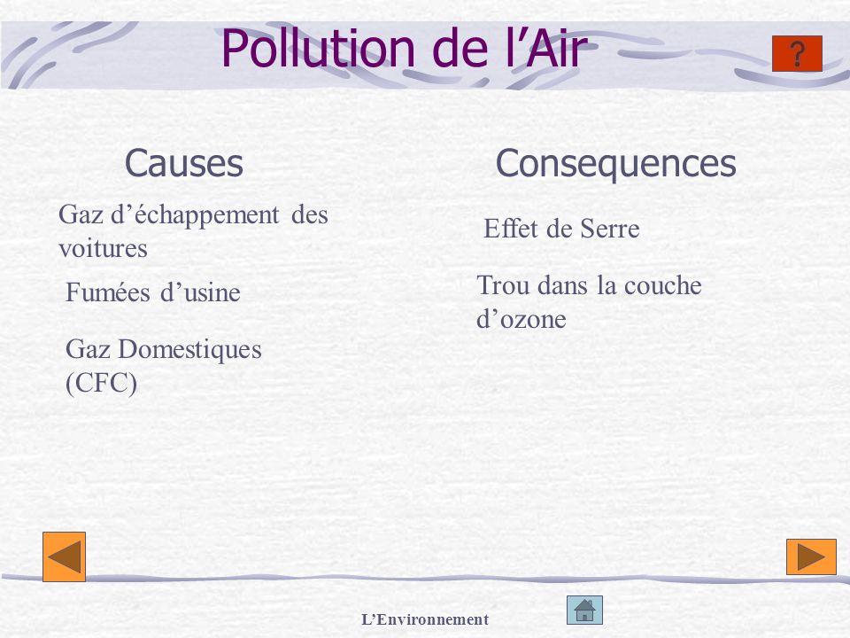 LEnvironnement Pollution de lAir CausesConsequences Gaz déchappement des voitures Effet de Serre Trou dans la couche dozone Fumées dusine Gaz Domestiq