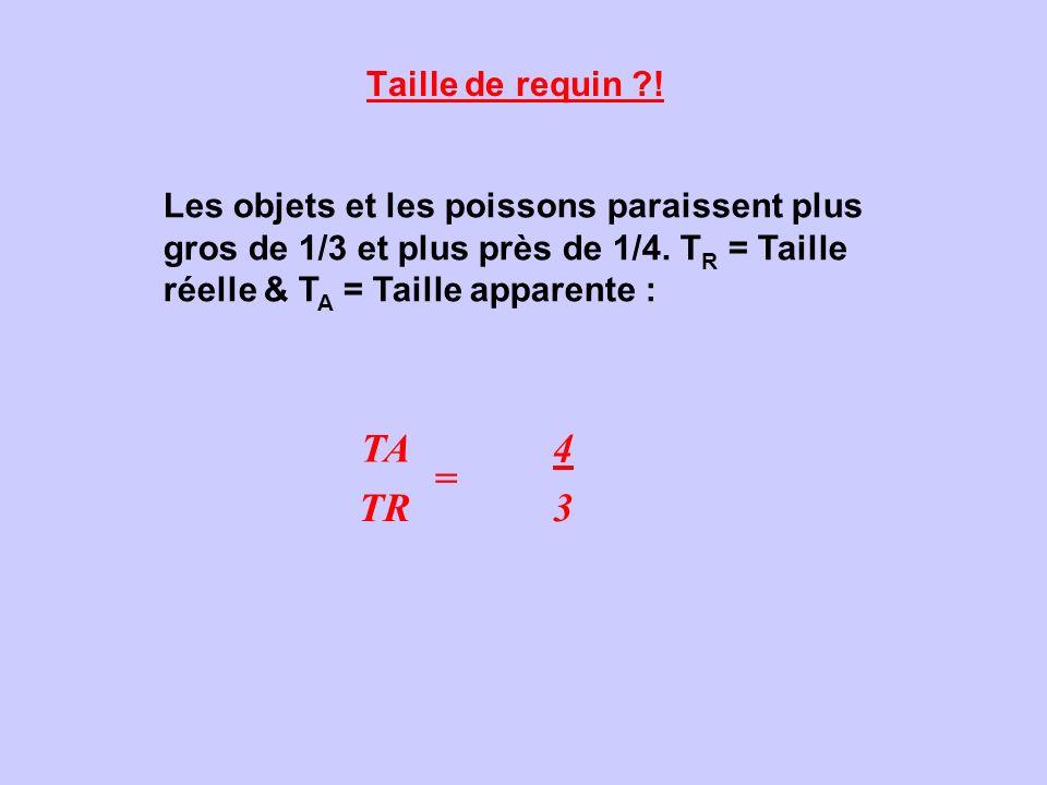 Taille de requin ?! Les objets et les poissons paraissent plus gros de 1/3 et plus près de 1/4. T R = Taille réelle & T A = Taille apparente : TA = 4