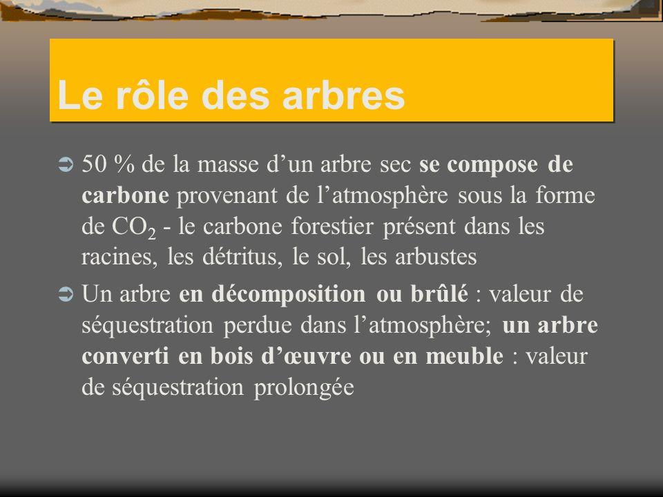 Le rôle des arbres 50 % de la masse dun arbre sec se compose de carbone provenant de latmosphère sous la forme de CO 2 - le carbone forestier présent dans les racines, les détritus, le sol, les arbustes Un arbre en décomposition ou brûlé : valeur de séquestration perdue dans latmosphère; un arbre converti en bois dœuvre ou en meuble : valeur de séquestration prolongée