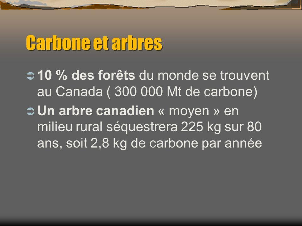 Carbone et arbres 10 % des forêts du monde se trouvent au Canada ( 300 000 Mt de carbone) Un arbre canadien « moyen » en milieu rural séquestrera 225 kg sur 80 ans, soit 2,8 kg de carbone par année