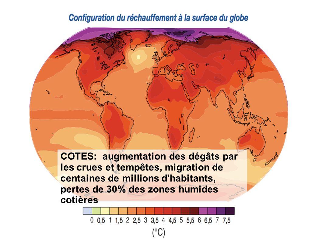 COTES: augmentation des dégâts par les crues et tempêtes, migration de centaines de millions d'habitants, pertes de 30% des zones humides cotières