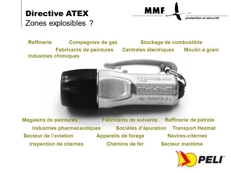 Raffinerie Compagnies de gaz Stockage de combustible Fabricants de peintures Centrales électriques Moulin à grain Industries chimiques Directive ATEX