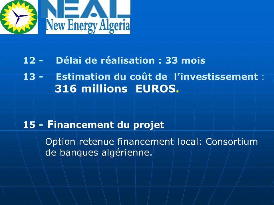 12 - Délai de réalisation : 33 mois 13 - Estimation du coût de linvestissement : 316 millions EUROS. 15 - F inancement du projet Option retenue financ