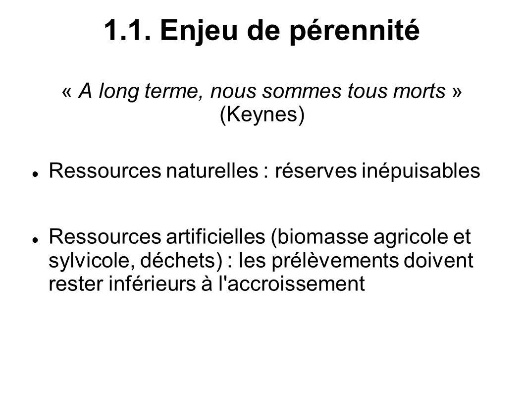 1.1. Enjeu de pérennité « A long terme, nous sommes tous morts » (Keynes) Ressources naturelles : réserves inépuisables Ressources artificielles (biom