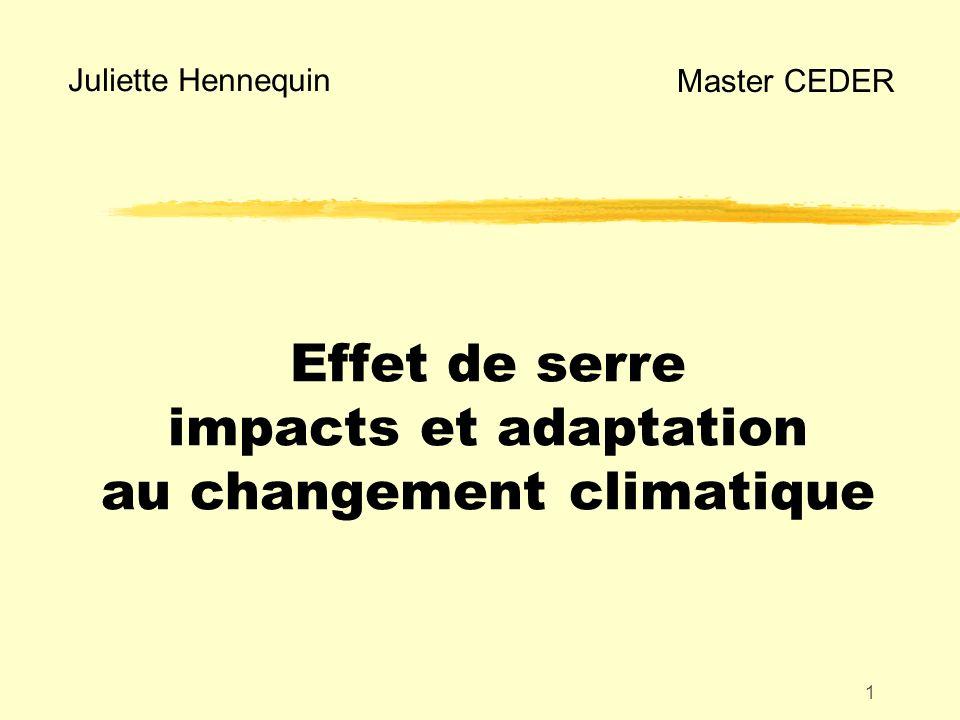 1 Effet de serre impacts et adaptation au changement climatique Juliette Hennequin Master CEDER