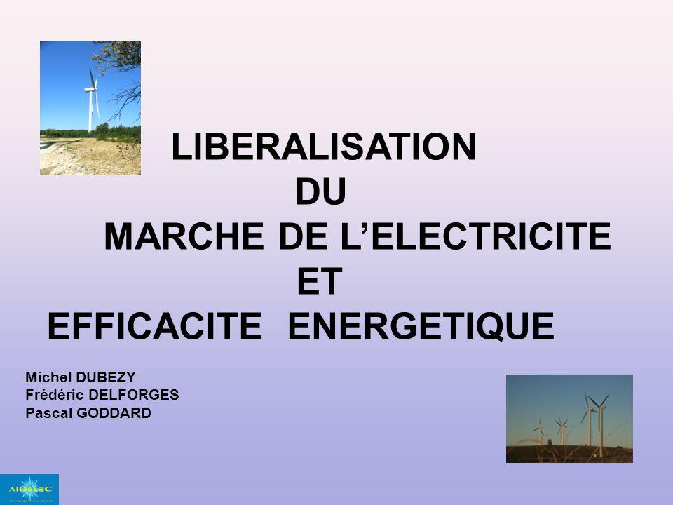 LIBERALISATION DU MARCHE DE LELECTRICITE ET EFFICACITE ENERGETIQUE Michel DUBEZY Frédéric DELFORGES Pascal GODDARD