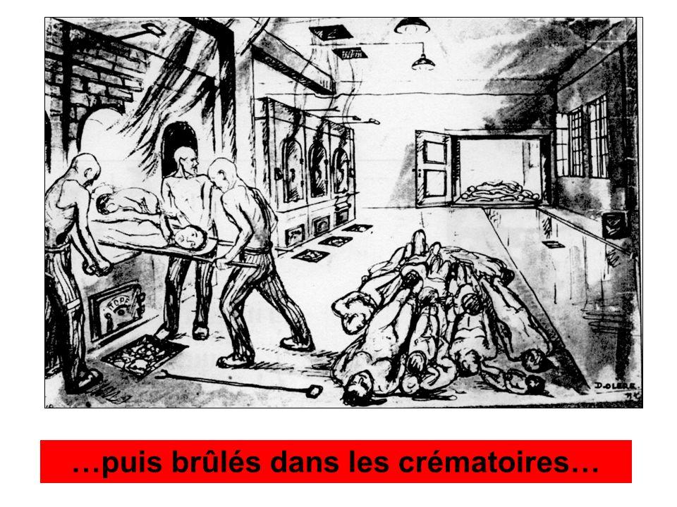 …puis brûlés dans les crématoires…