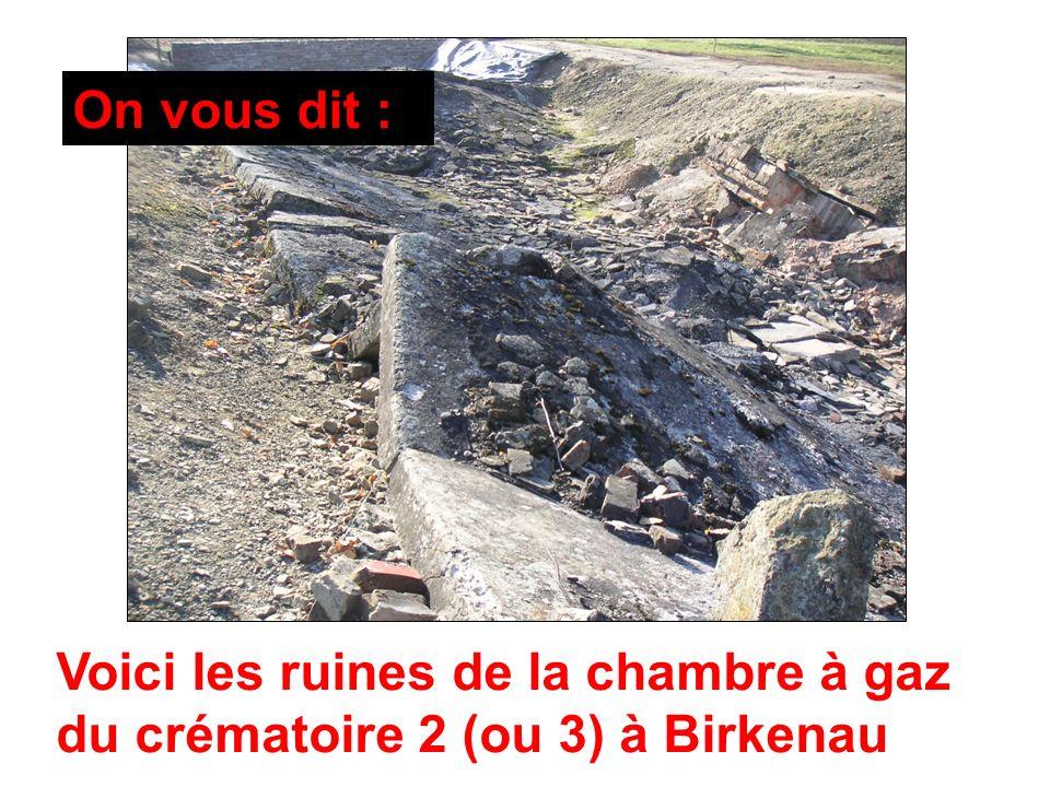 Voici les ruines de la chambre à gaz du crématoire 2 (ou 3) à Birkenau On vous dit :