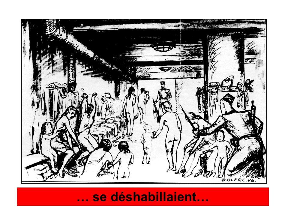 1990 : soucieux de répondre à ce rapport, le Musée dAuschwitz demande une contre-expertise.