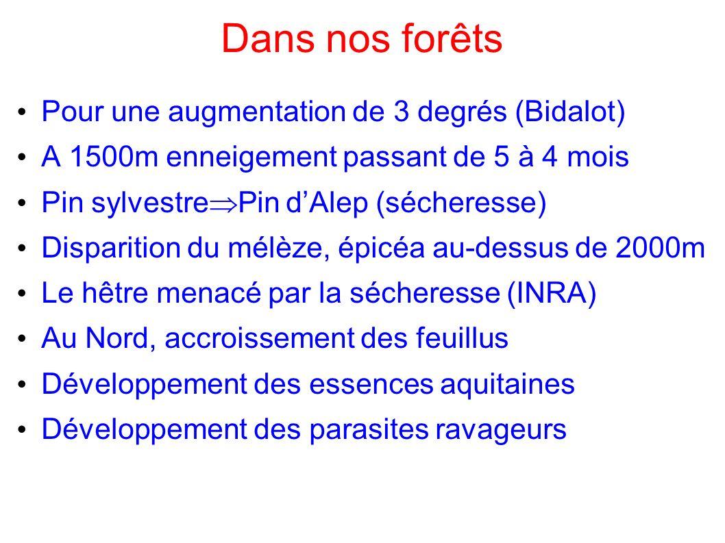 Dans nos forêts Pour une augmentation de 3 degrés (Bidalot) A 1500m enneigement passant de 5 à 4 mois Pin sylvestre Pin dAlep (sécheresse) Disparition