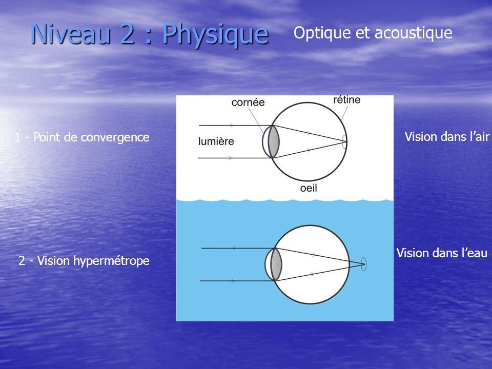 Niveau 2 : Physique Optique et acoustique 1 - Point de convergence 2 - Vision hypermétrope Vision dans lair Vision dans leau