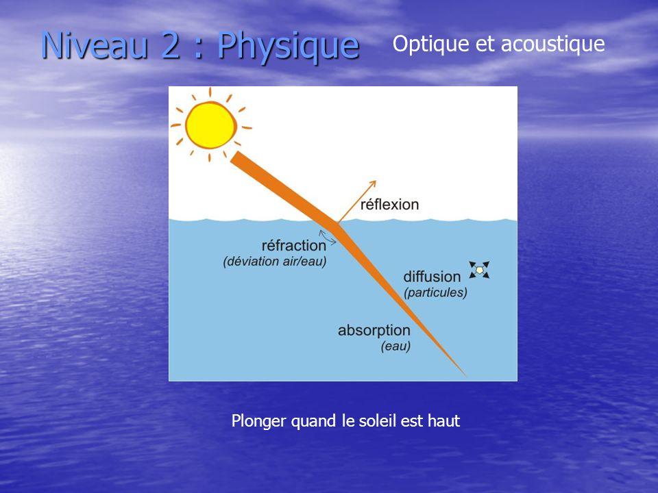 Niveau 2 : Physique Optique et acoustique Plonger quand le soleil est haut