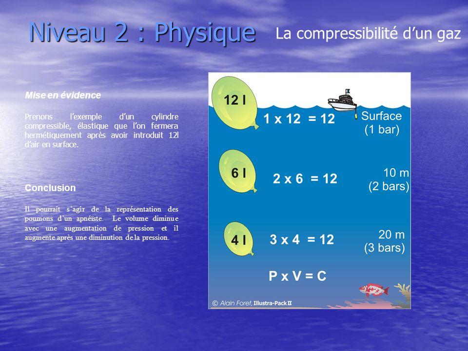 Niveau 2 : Physique La compressibilité dun gaz Mise en évidence Prenons lexemple dun cylindre compressible, élastique que lon fermera hermétiquement a