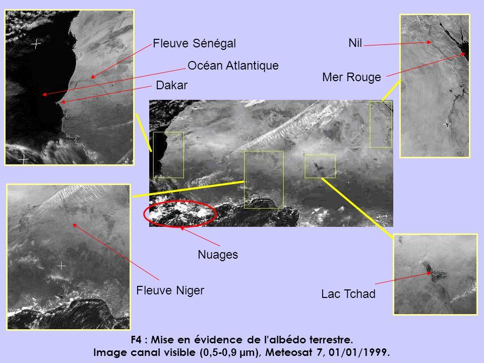F4 : Mise en évidence de l'albédo terrestre. Image canal visible (0,5-0,9 µm), Meteosat 7, 01/01/1999. Dakar Fleuve Sénégal Nil Mer Rouge Fleuve Niger