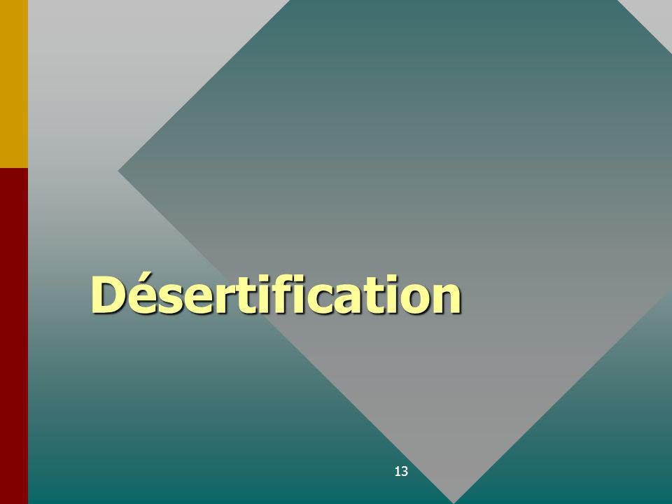 13 Désertification