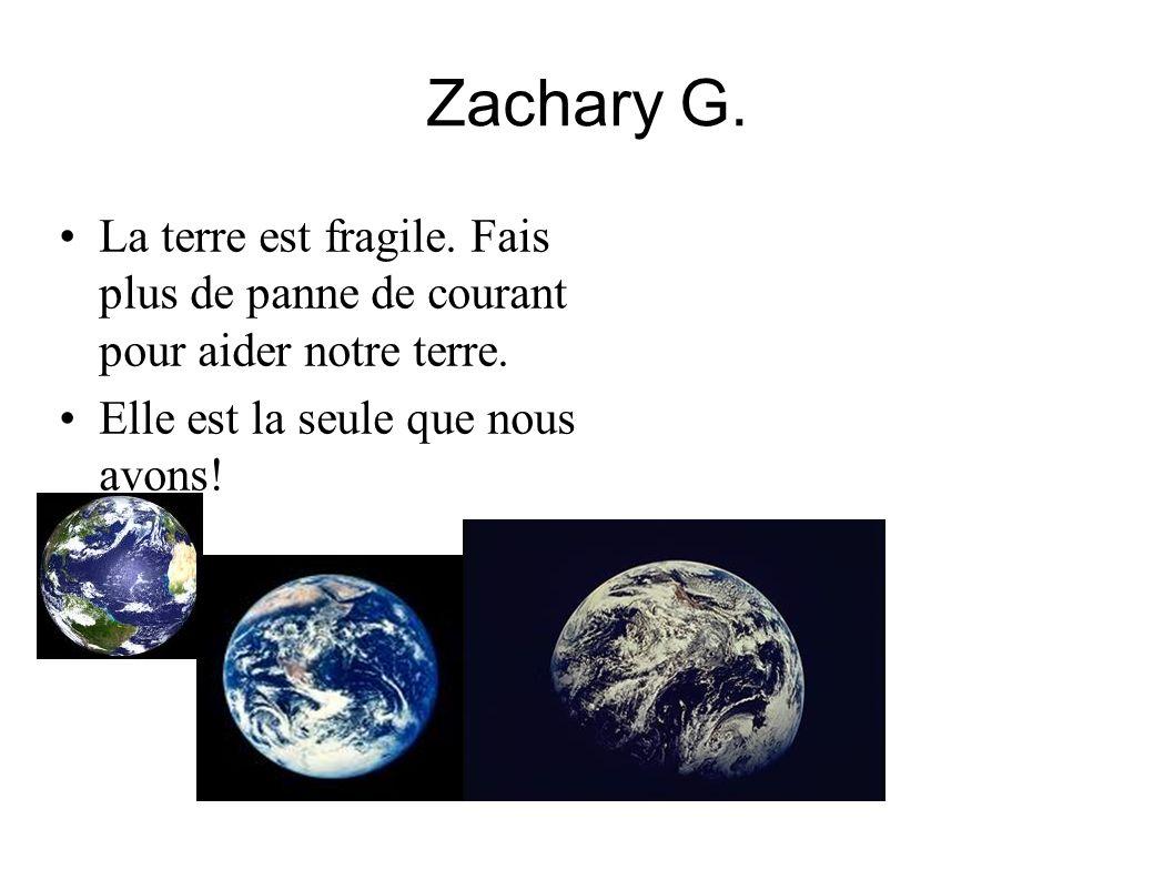 Zachary G. La terre est fragile. Fais plus de panne de courant pour aider notre terre. Elle est la seule que nous avons!