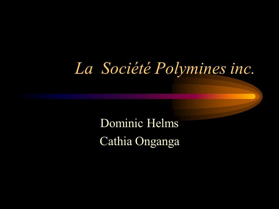 Historique La Société Polymines fut fondée au début de 1970 –trois droits exclusifs sur une concession Objectifs à long terme à lépoque: –objectifs de croissance –devenir lune des principales entreprises de son secteur