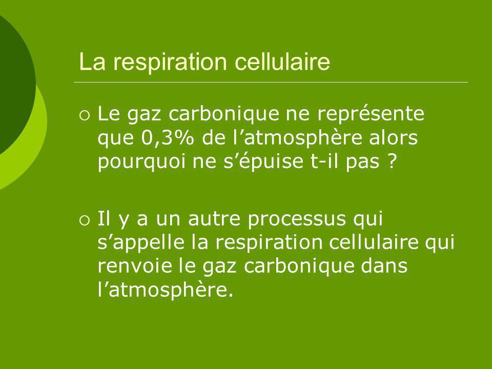 La respiration cellulaire Le gaz carbonique ne représente que 0,3% de latmosphère alors pourquoi ne sépuise t-il pas .