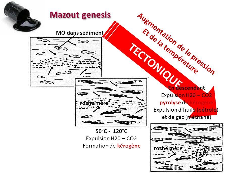 Mazout genesis MO dans sédiment 50°C - 120°C Expulsion H20 – CO2 Formation de kérogène roche mère TECTONIQUE Augmentation de la pression Et de la temp