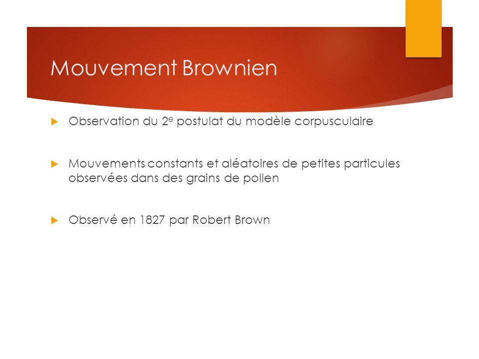 Mouvement Brownien Observation du 2 e postulat du modèle corpusculaire Mouvements constants et aléatoires de petites particules observées dans des gra
