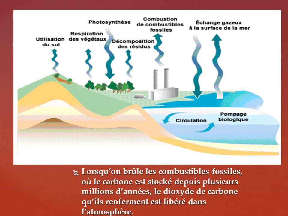 Lorsquon brûle les combustibles fossiles, où le carbone est stocké depuis plusieurs millions dannées, le dioxyde de carbone quils renferment est libéré dans latmosphère.