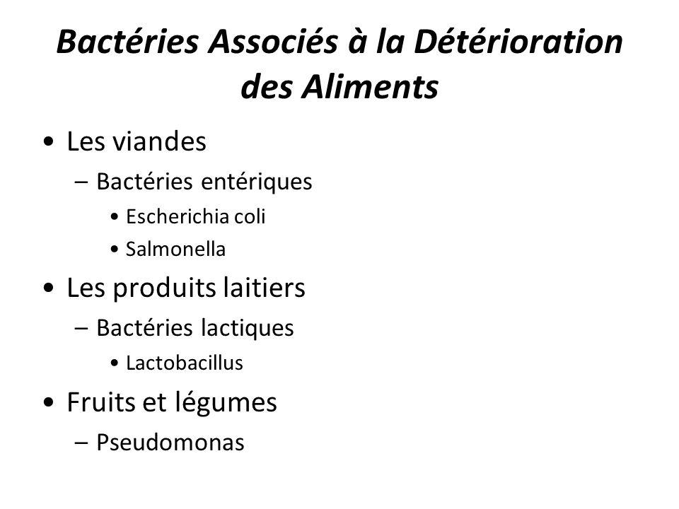 Bactéries Associés à la Détérioration des Aliments Les viandes –Bactéries entériques Escherichia coli Salmonella Les produits laitiers –Bactéries lact