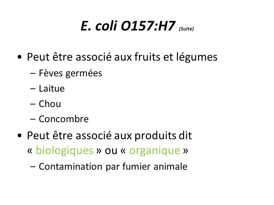E. coli O157:H7 (Suite) Peut être associé aux fruits et légumes –Fèves germées –Laitue –Chou –Concombre Peut être associé aux produits dit « biologiqu