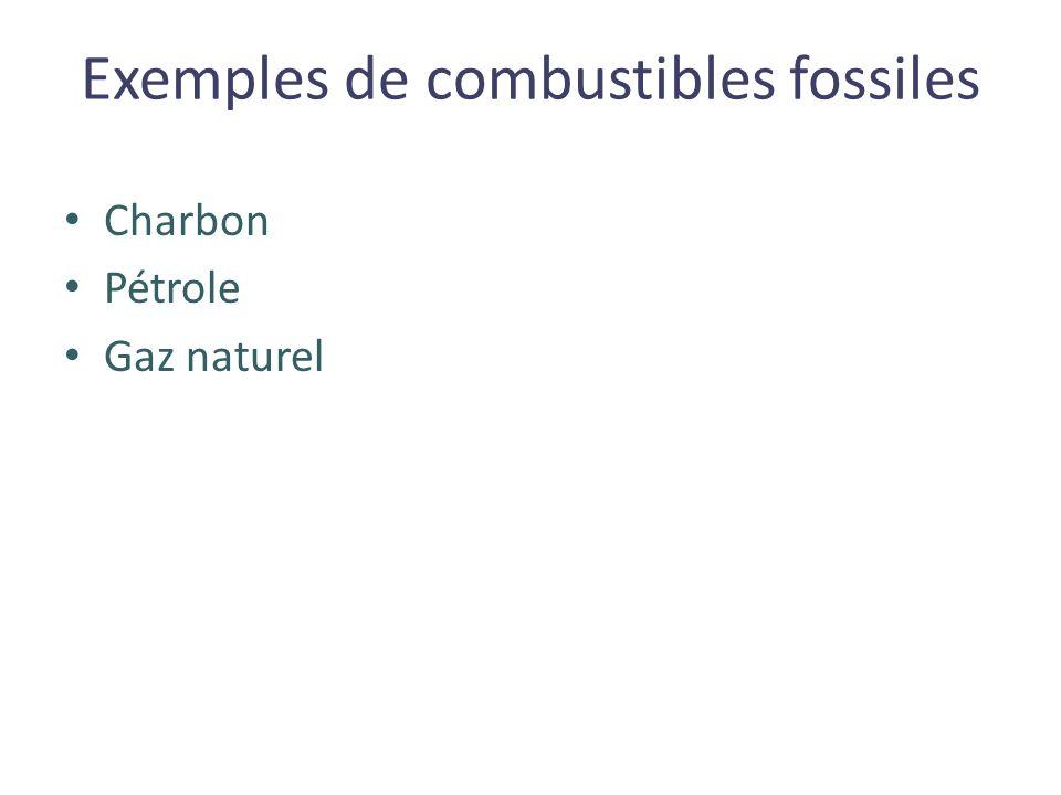 Exemples de combustibles fossiles Charbon Pétrole Gaz naturel