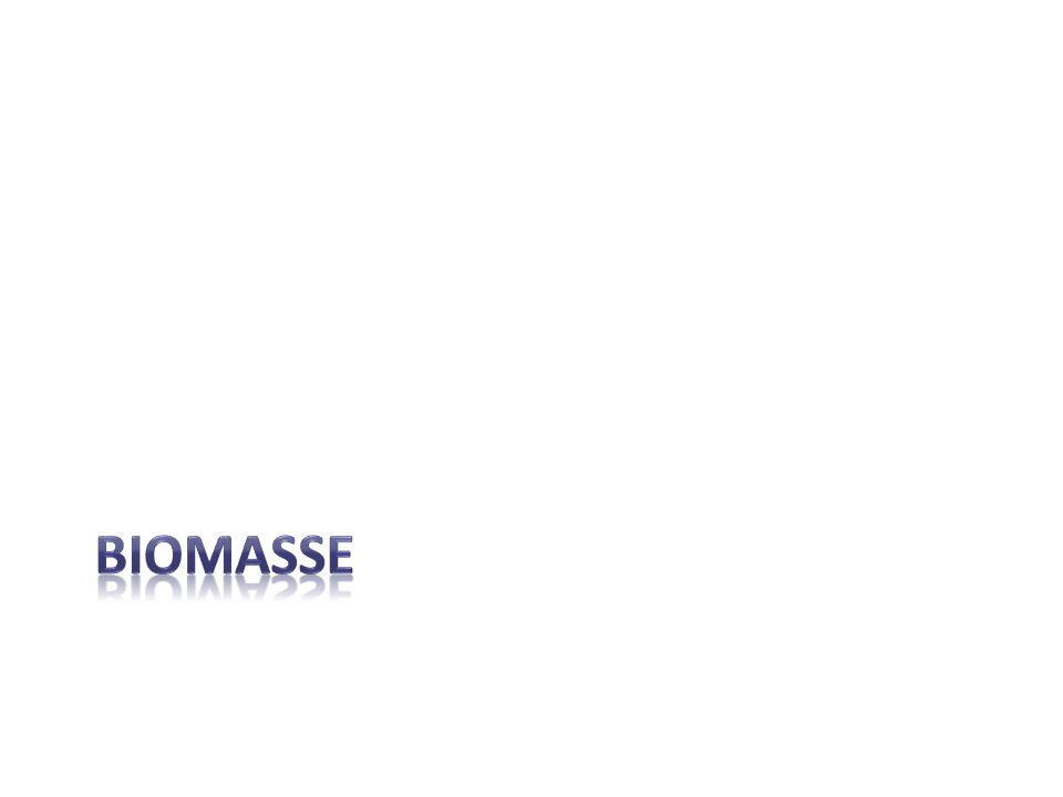 Définition de biomasse Matières organiques, cest-à-dire des matières qui proviennent dêtres vivants et de leurs déchets.