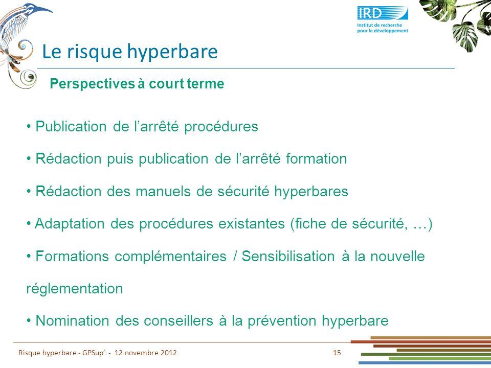 Le risque hyperbare 15 Risque hyperbare - GPSup - 12 novembre 2012 Publication de larrêté procédures Rédaction puis publication de larrêté formation R