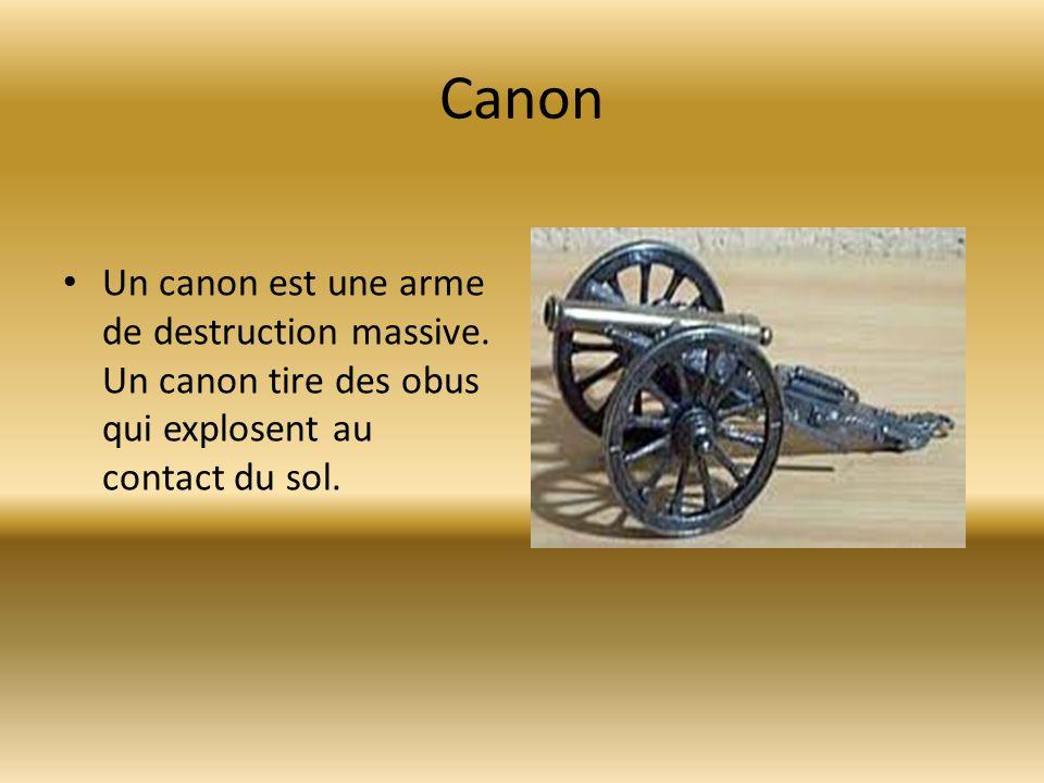 Canon Un canon est une arme de destruction massive. Un canon tire des obus qui explosent au contact du sol.