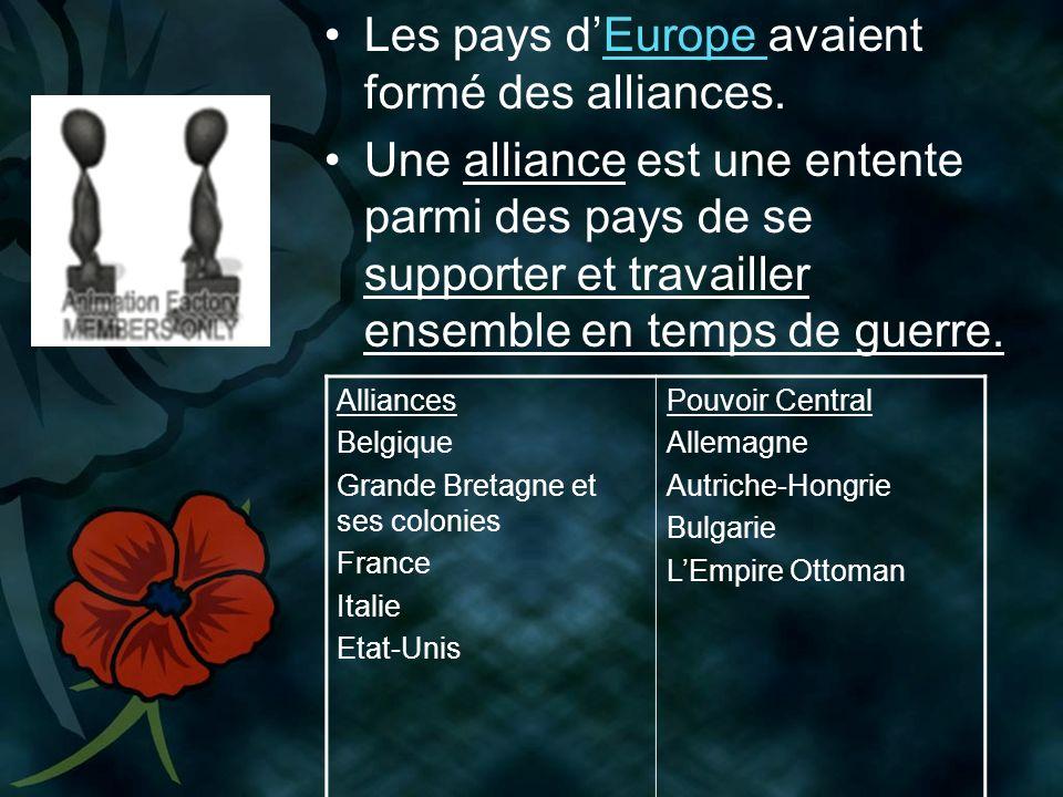 Les pays dEurope avaient formé des alliances.Europe Une alliance est une entente parmi des pays de se supporter et travailler ensemble en temps de guerre.
