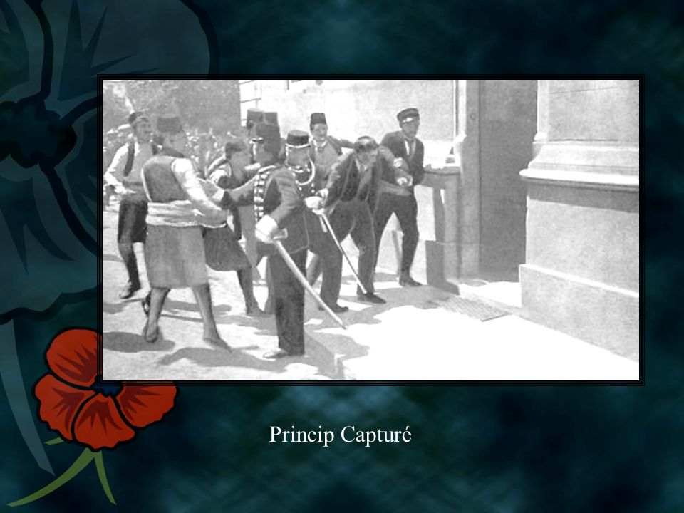 Princip Capturé