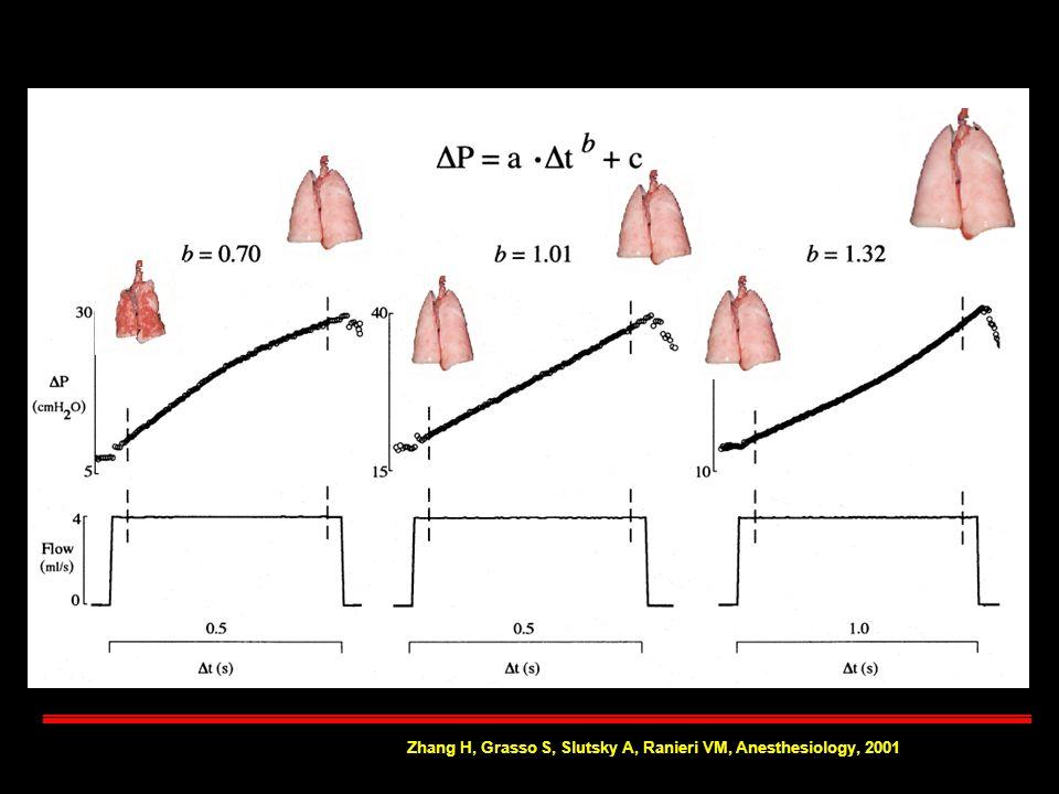 Zhang H, Grasso S, Slutsky A, Ranieri VM, Anesthesiology, 2001