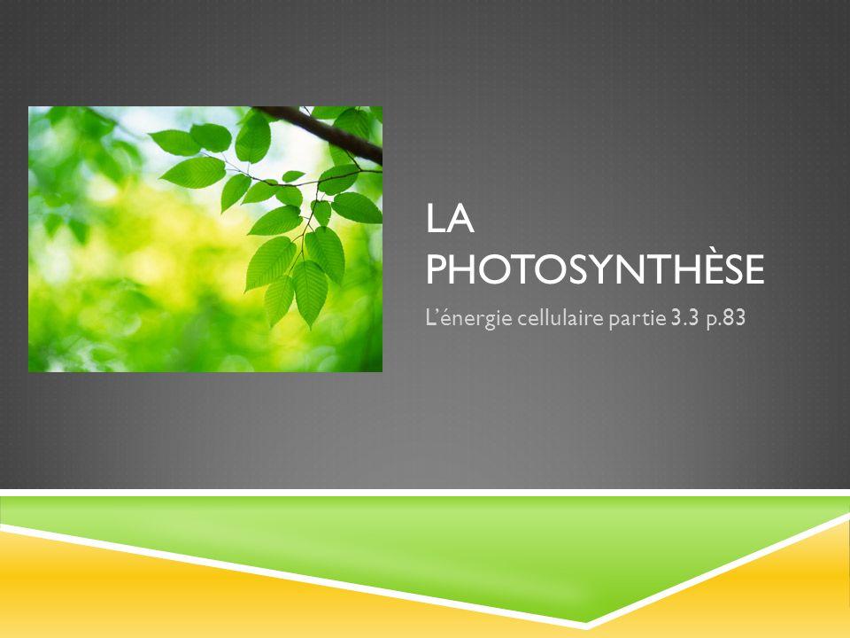 LA PHOTOSYNTHÈSE Lénergie cellulaire partie 3.3 p.83