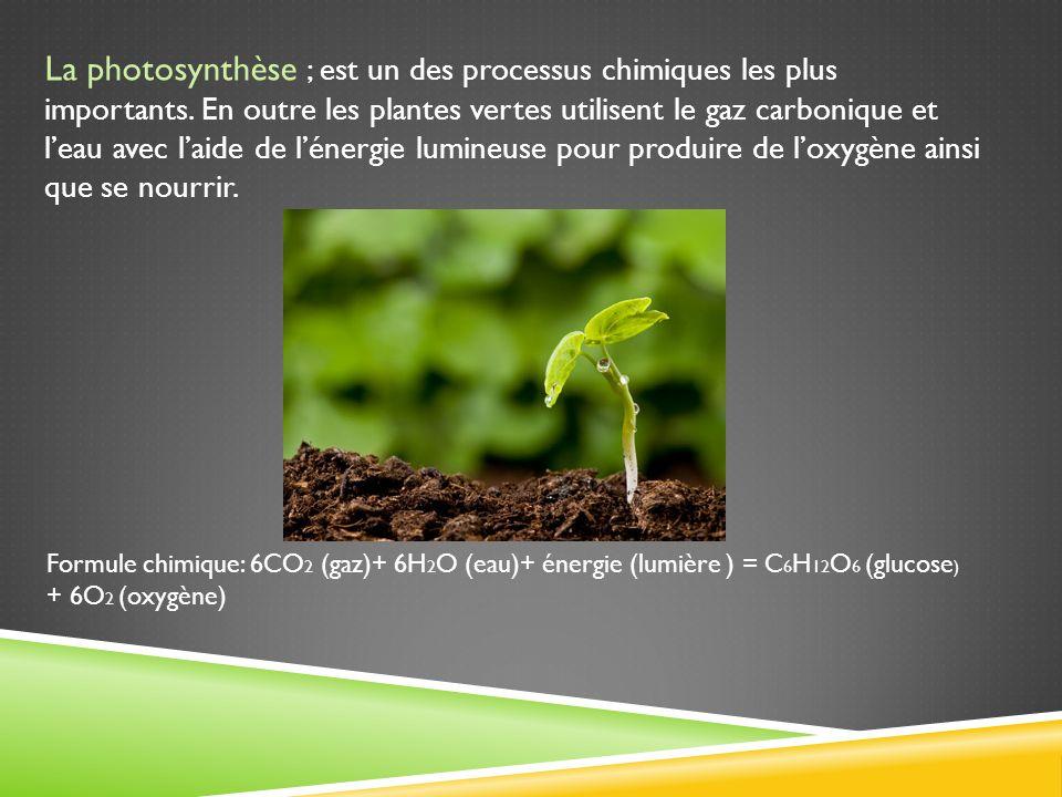 La photosynthèse ; est un des processus chimiques les plus importants. En outre les plantes vertes utilisent le gaz carbonique et leau avec laide de l