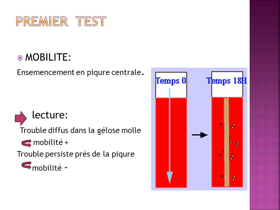 MOBILITE: Ensemencement en piqure centrale. lecture: Trouble diffus dans la gélose molle mobilité + Trouble persiste prés de la piqure mobilité -