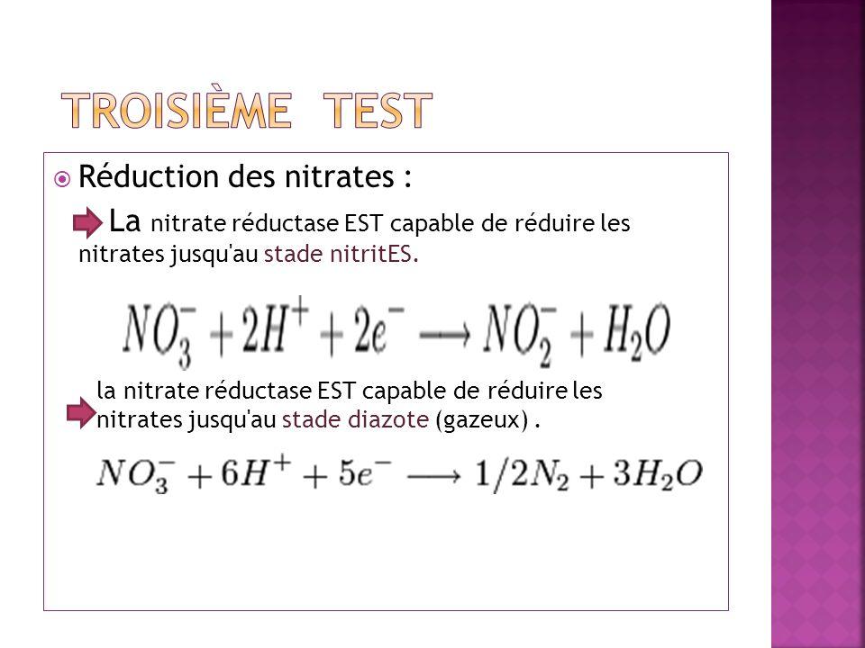 Réduction des nitrates : La nitrate réductase EST capable de réduire les nitrates jusqu'au stade nitritES. la nitrate réductase EST capable de réduire