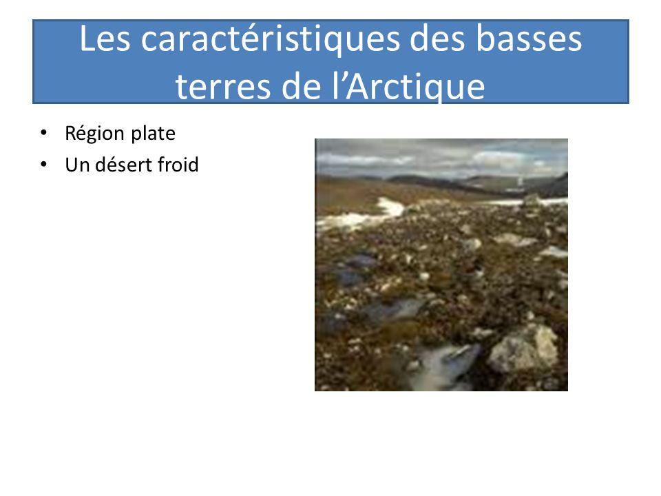 Les caractéristiques des basses terres de lArctique Région plate Un désert froid